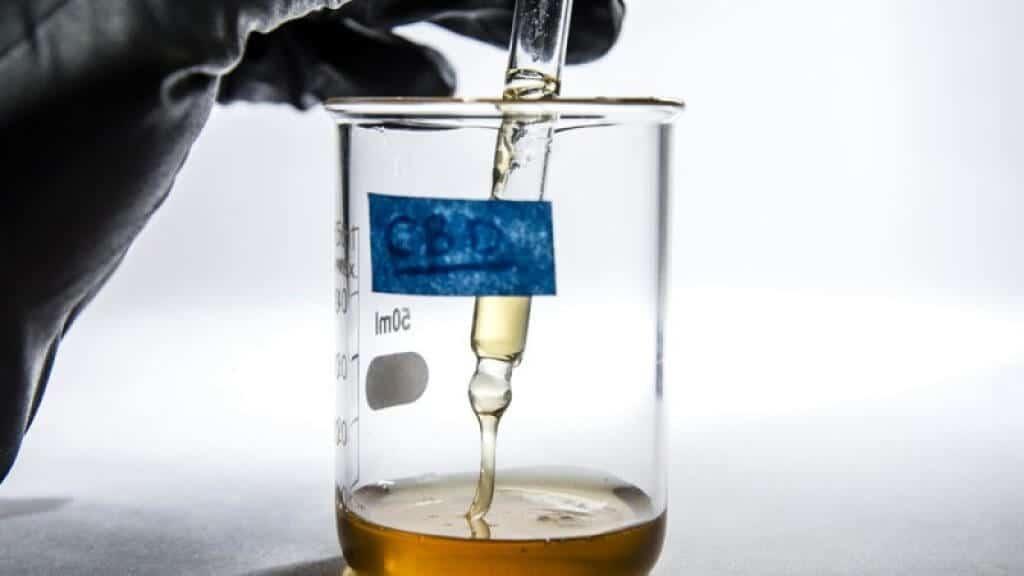 huile de cbd extraction