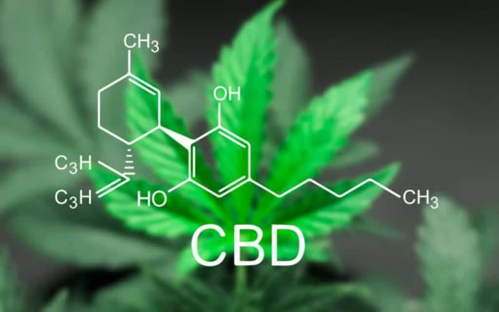 CBD cannabis medical