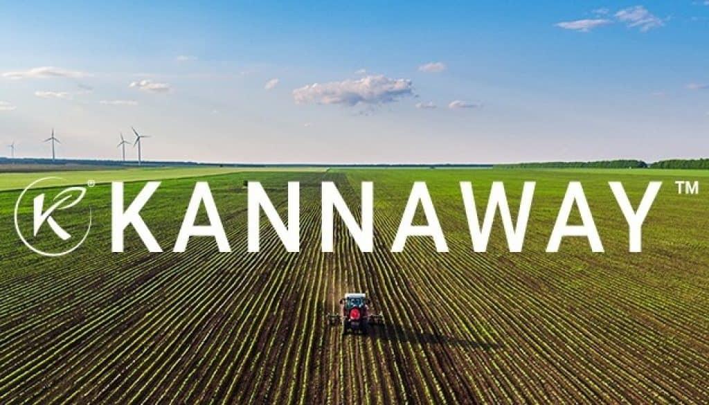 kannaway arnaque