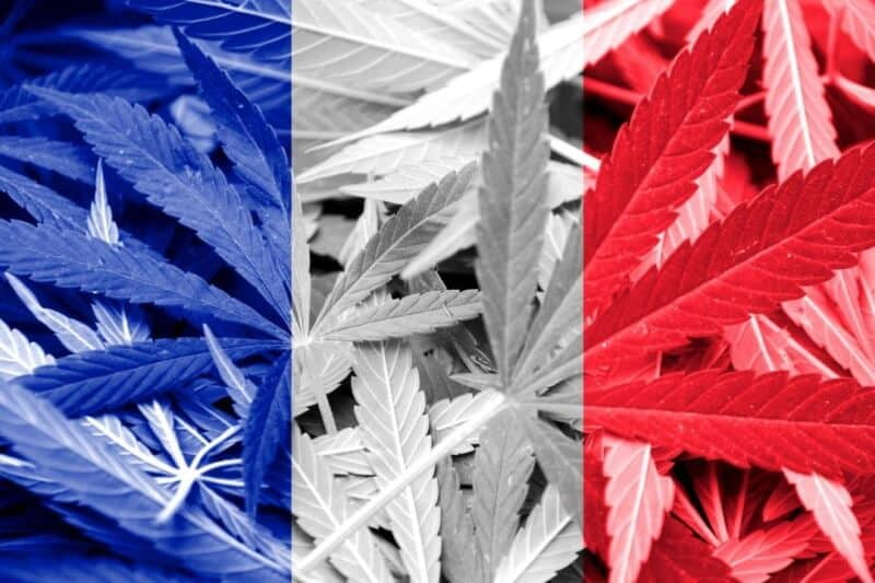 experimentation cannabis therapeutique france