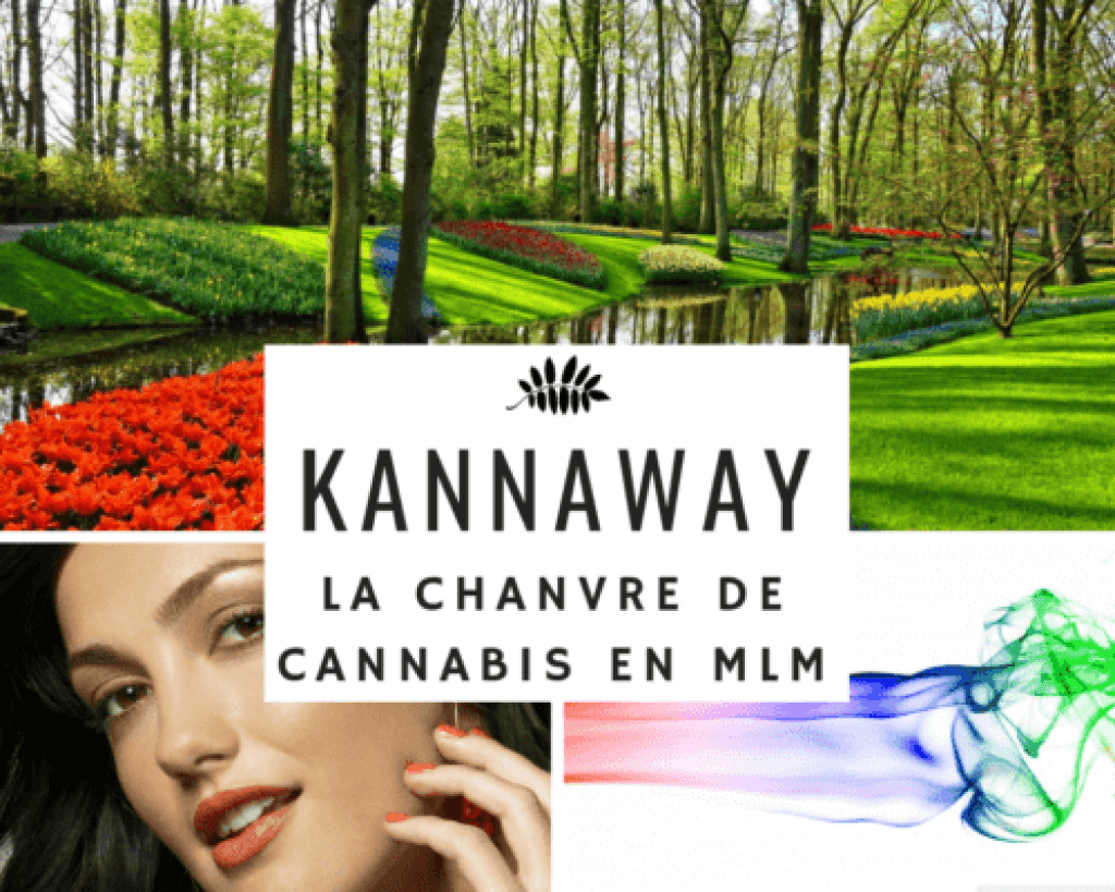 kannaway cannabis multi level marketing