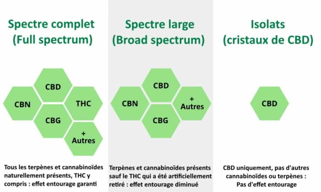 CBD Sptectre complet