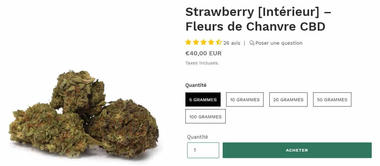 fleur chanvre strawberry